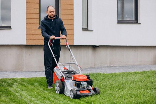 Jak zadbać o trawnik w ogrodzie