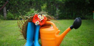 Czego nie może zabraknąć w Twoim domowym ogródku