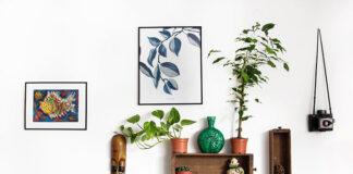 Dlaczego fotoobrazy to świetna dekoracja ścian w domu